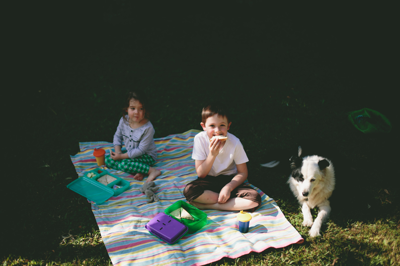 picnic in the backyard